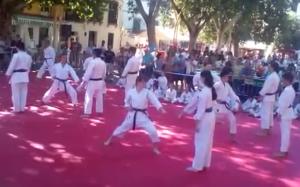 Kamae previo a la ejecución de Ippon Kumite durante la exhibición de Kidokan