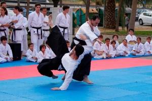 Una de las técnicas de Aikido ejecutdas por Sensei Antonio Amado