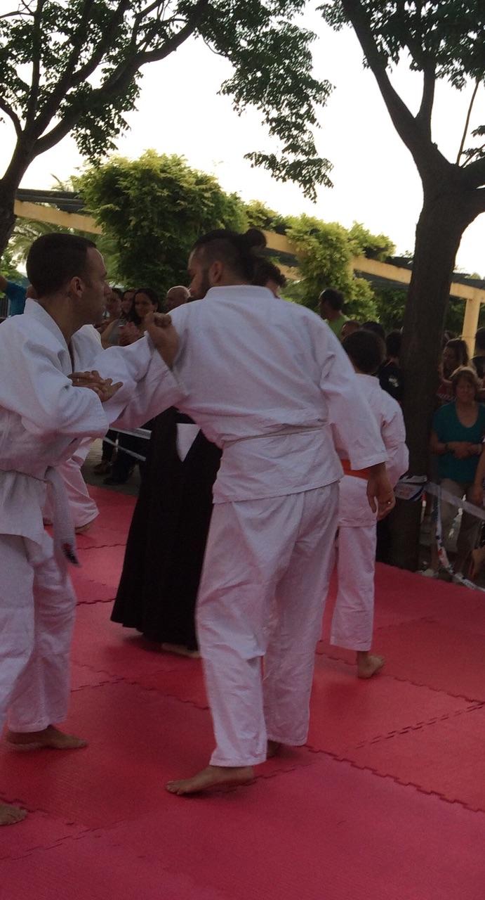 Exhibici n de tai jitsu jujutsu y kenjutsu en la puebla - Artes marciales sevilla ...