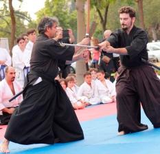 Instante de la demostración de Kenjutsu de Sensei José Navarro