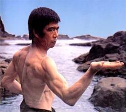 """Fotografía de portada del Volúmen 1 de su serie de libros """"Shotokan Karate International"""""""