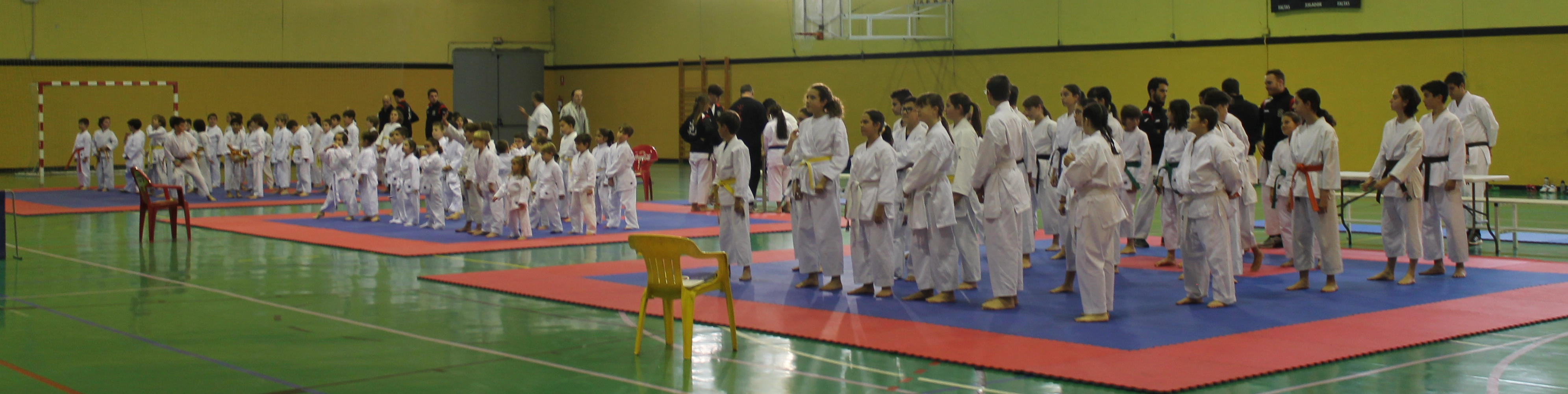 Solidaridad y karate en el xii campeonato ben fico kidokan - Artes marciales sevilla ...