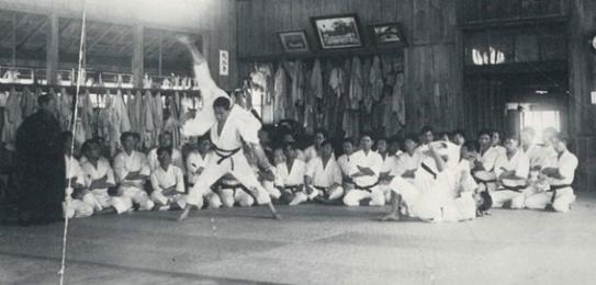 proyectando shotokan
