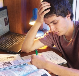 Los estudios sirven a veces para justificar el abandono, aunque los motivos reales sena otros