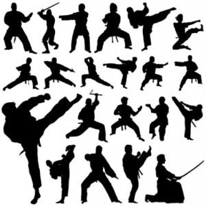 Existen una gran variedad de artes marciales y escuelas. Si no encuentras los que buscas, sigue buscando