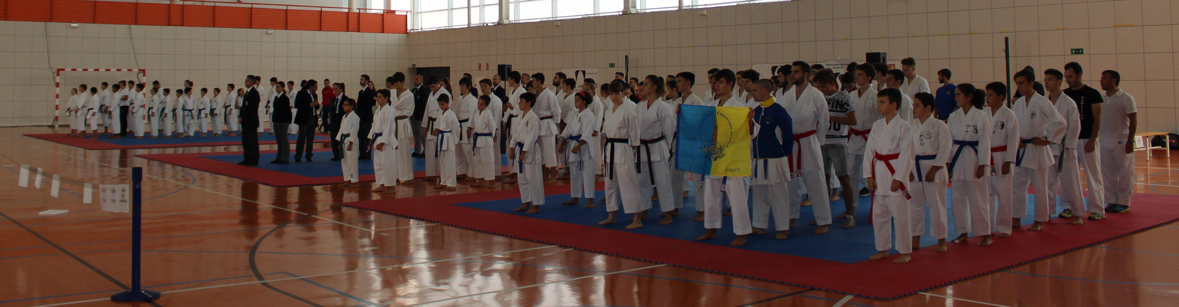 Iii torneo de la delegaci n sevillana de karate budoblog - Artes marciales sevilla ...