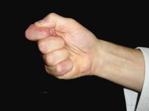 ippon-ken-hand
