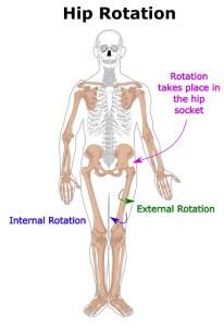 hip-internal-external-rotation
