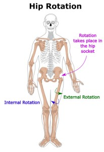 hip-internal-external-rotation