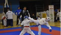 MEDALLERO IV CPTO AND PROMESAS KUMITE SEVILLA3
