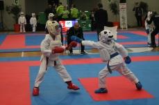 Los karatekas sevillanos hicieron un gran trabajo en kumite